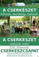 Cserkész toborzóplakát 2010